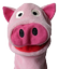 A Pig in China - Official webpage